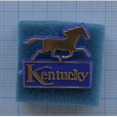"Значок ""Kentucky"""