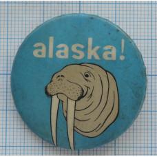 "Значок ""Alaska"""
