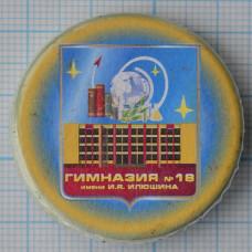 Значок - Гимназия №18 имени И.Я. Илюшина