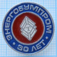 Значок - ЭНЕРГОБУМПРОМ 30 лет