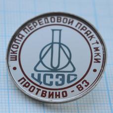 Значок - Протвино-83, школа передовой практики. ЦСЭС