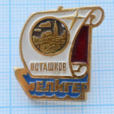Значок - Всероссийский молодежный форум Селигер, Осташков