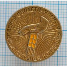 Значок Члену ученической бригады Ростовской области