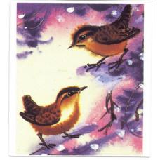 Календарик карманный - 1988. Птицы. Крапивники