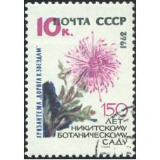 1962, 27 сентября. 150-летие Государственного Никитского ботанического сада. Хризантема 10 коп.