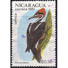 1981 Ноябрь Никарагуа Линейный Дятел 0.50 кордобы