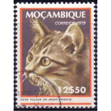 1979 Март Мозамбик Кошки Средне-Восточная Кошка 12.50 эскудо