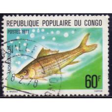 1977 Июнь Республика Конго Пресноводные Рыбы Лабео 60 франков