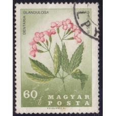 1967 Февраль Венгрия Цветы 60 филлеров