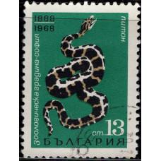 1968, июль. Почтовая марка Болгарии. 80-летие Софийского городского зоопарка. 13 ст.