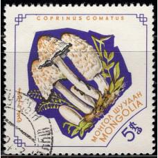 1964, январь. Почтовая марка Монголии. Грибы. 5 монго