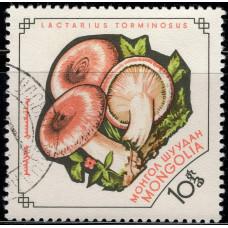 1964, январь. Почтовая марка Монголии. Грибы. 10 монго