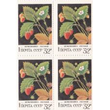 Квартблок СССР. Земляника лесная. 32 копейки. 1982