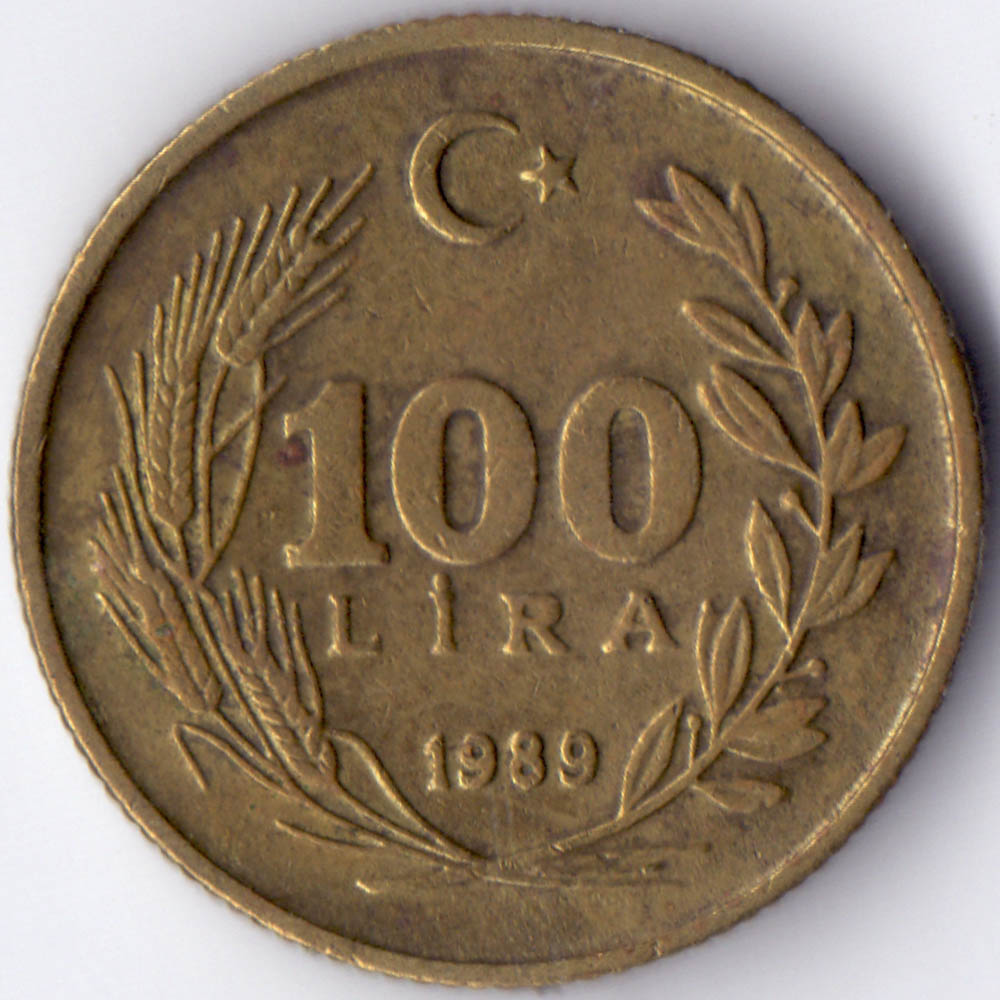 100 лир 1989 Турция - 100 lire 1989 Turkey, из оборота