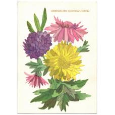 Открытка - Цветы. Хризантемы. Германия