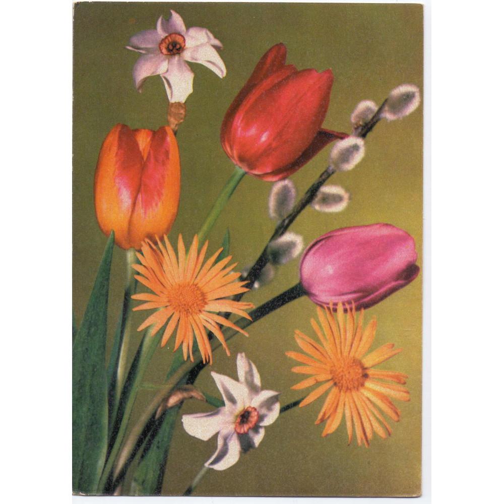 Открытка - Цветы. Букет, тюльпаны, нарциссы, верба. Германия