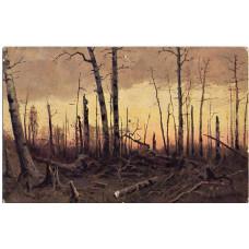 Открытка И.И. Шишкин. Горелый лес. Чистая