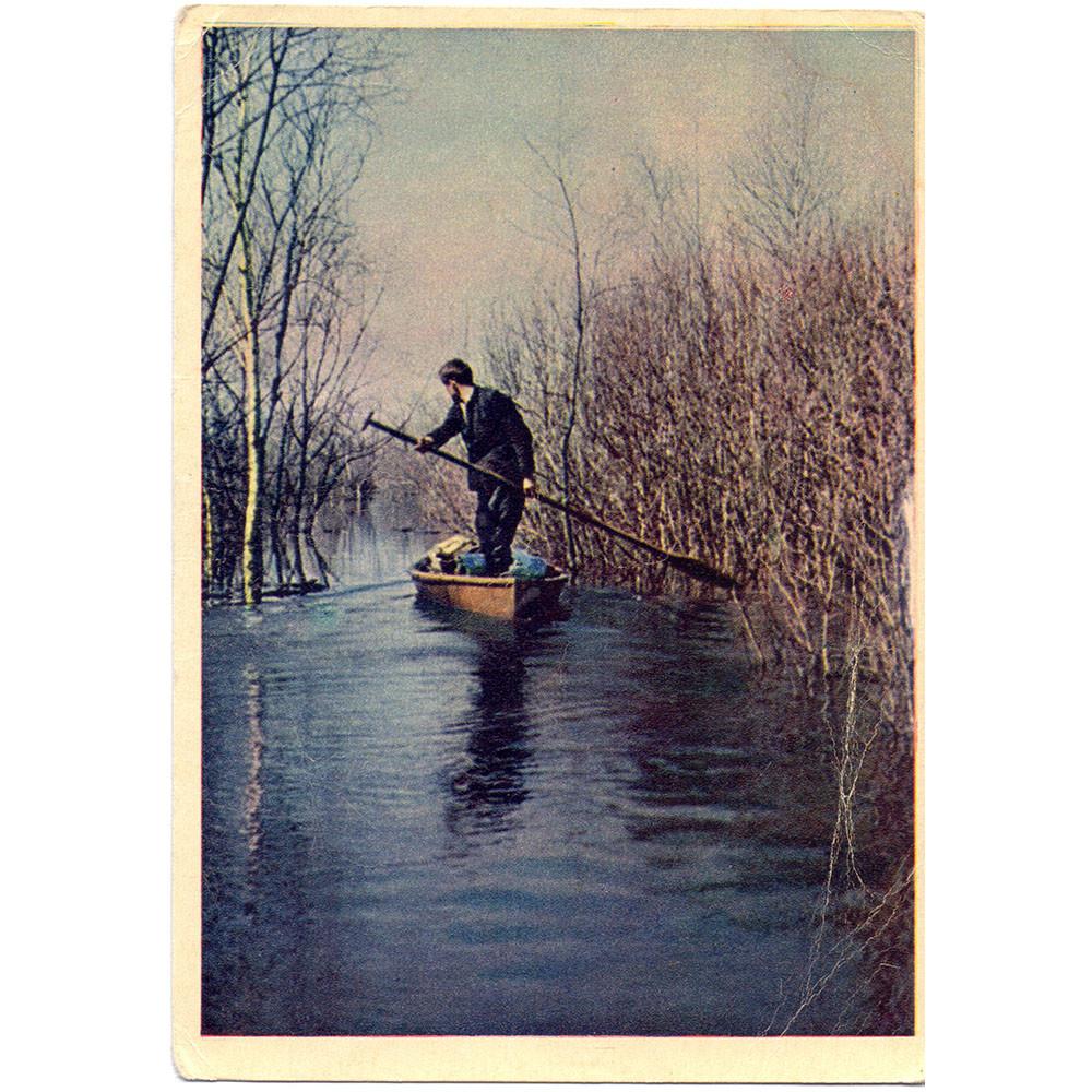 Открытка По разливам Ильменя. Фото В. Гиппенрейтера. 1958 г. Чистая
