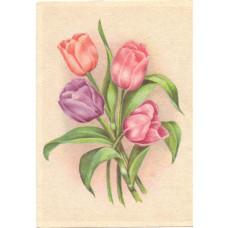Открытка Тюльпаны. Чистая