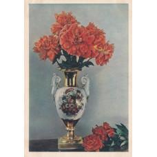 Открытка Пионы. Цветное фото И. Шагина. 1956 г. Чистая