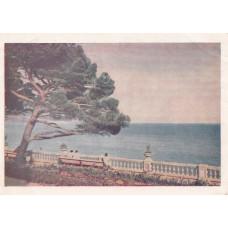 Открытка Ялта. Вид на море. Цветное фото И. Б. Голанд. 1954 г. Чистая