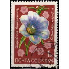 1974, ноябрь. Почтовая марка СССР. Цветы, 1 коп.