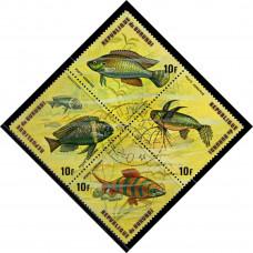 1974, сентябрь. Почтовая марка Бурунди. Рыбы, 10Fr