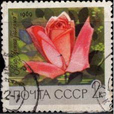 1969, май. Главный ботанический сад Академии наук СССР в Москве