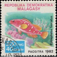 1982, декабрь. Почтовая марка Мадагаскара. Рыбы, 200Fr