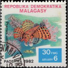 1982, декабрь. Почтовая марка Мадагаскара. Рыбы, 30Fr