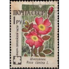 1960, ноябрь. Почтовая марка СССР. Цветы, 1 руб.