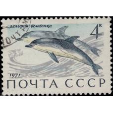 1971, август. Почтовая марка СССР. Млекопитающие — обитатели морей и океанов, омывающих СССР, 4 коп.