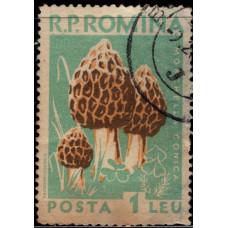 1958, июль. Почтовая марка Румынии. Грибы, 1L