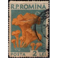 1958, июль. Почтовая марка Румынии. Грибы, 2L