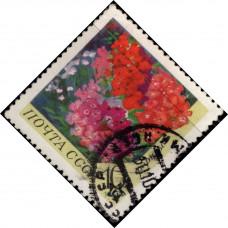 1970, ноябрь. Почтовая марка СССР. Цветы, 10 коп.