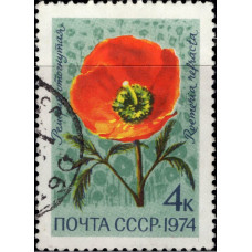 1974, ноябрь. Почтовая марка СССР. Цветы, 4 коп.